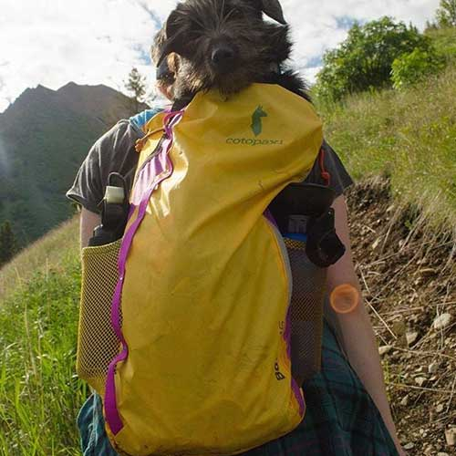 Cotopaxi_BackPack_2